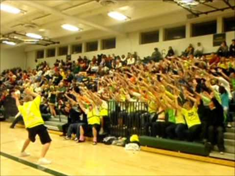 Roller Coaster Against Dowling