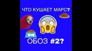 ОБЗОР НА МИСКИ-ЧТО КУШАЕТ МАРС?//Migel LIFE