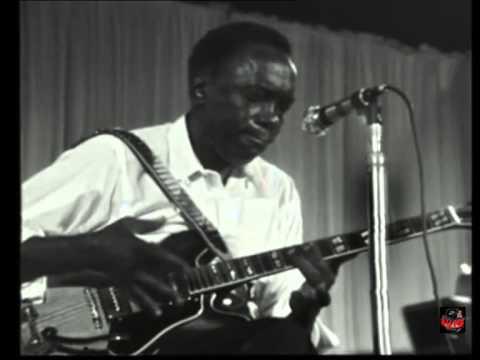 1969 - John Lee Hooker - Boom Boom (Live Video)