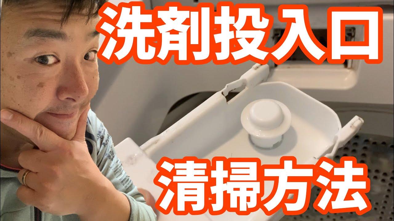 機 掃除 口 洗濯 投入 洗剤