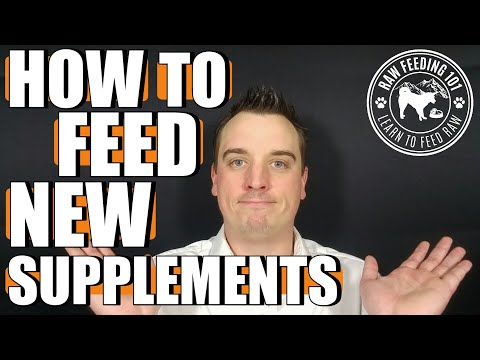 Feeding Raw Dog Food Supplements