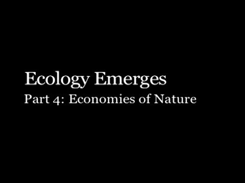 Ecology Emerges #4 - Economies Of Nature