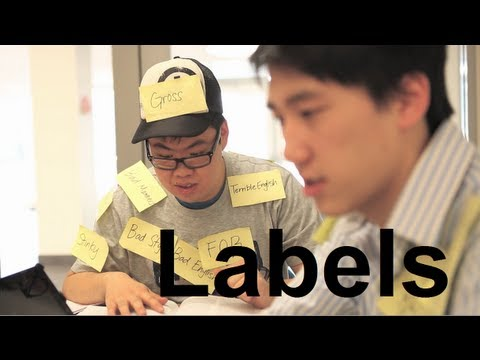 Labels - The Asian   American Divide