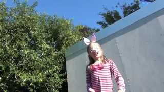 Make Your Own Bunny Rabbit Ears