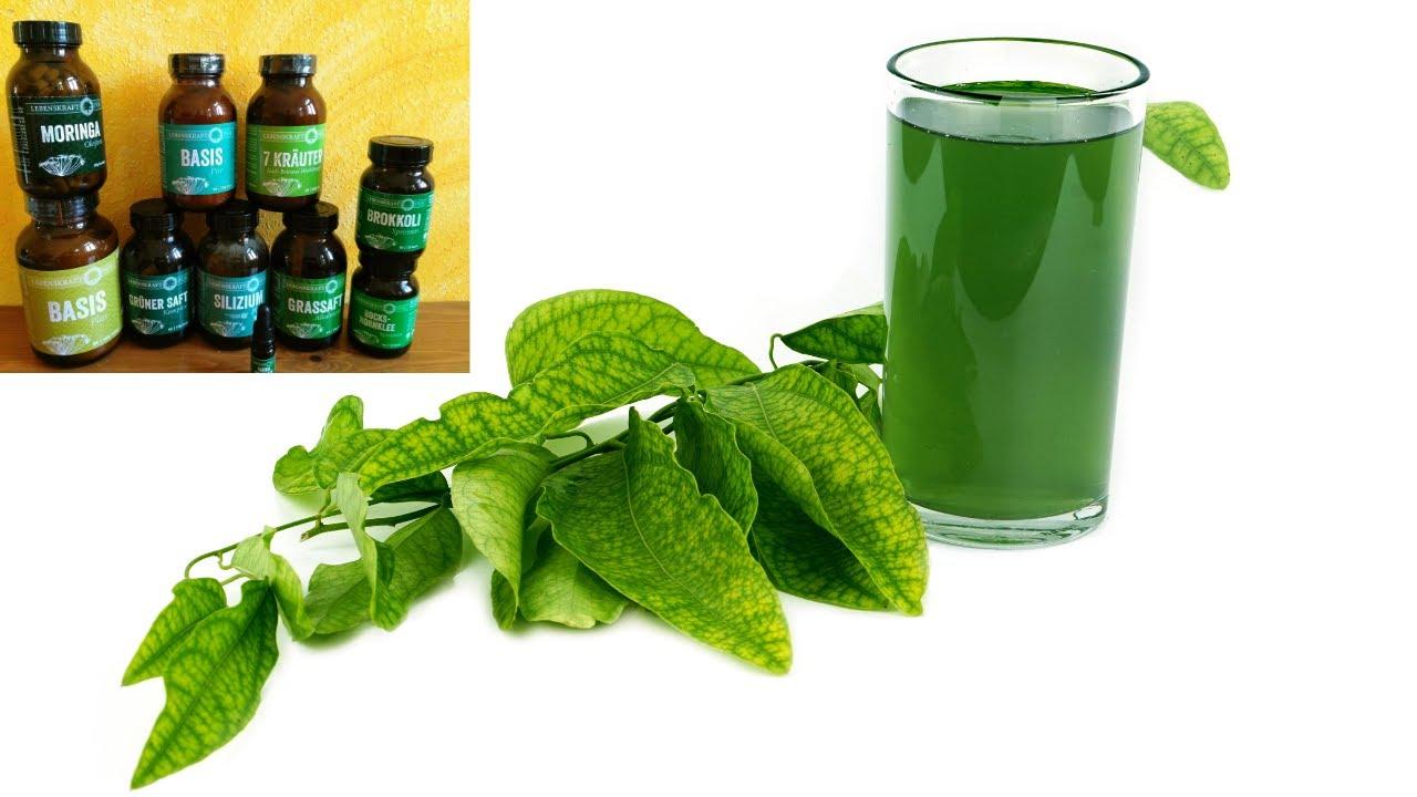 Grünes Lebenselixier für unsere Gesundheit + 5 Tage RABATTaktion Lebenskraft pur