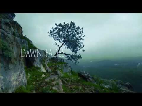 ALUNAH - Awakening The Forest (Official Lyric Video) | Napalm Records Mp3