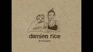 Watch Damien Rice The Professor video