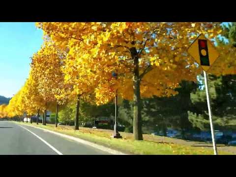 Beautiful drive and fall colors on Veterans Memorial Parkway