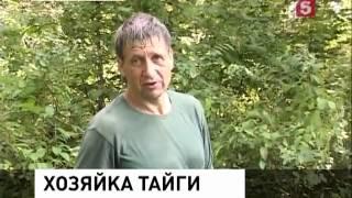 В Хабаровском крае поймали тигрицу