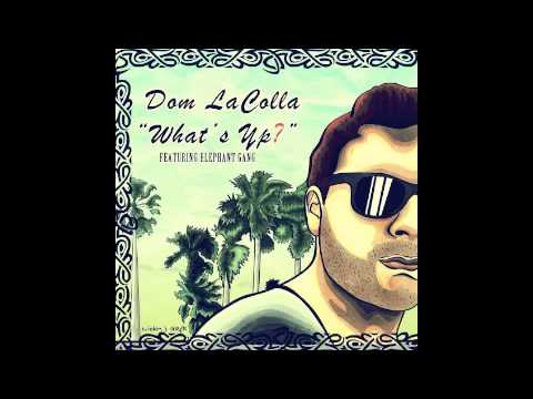 Dom LaColla and Elephant Gang - Faded (Acoustic) [Reggae/Rock/Ska/Hip-Hop Music]