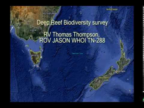 Tasman Fracture Zone - Deep Reef Biodiversity survey