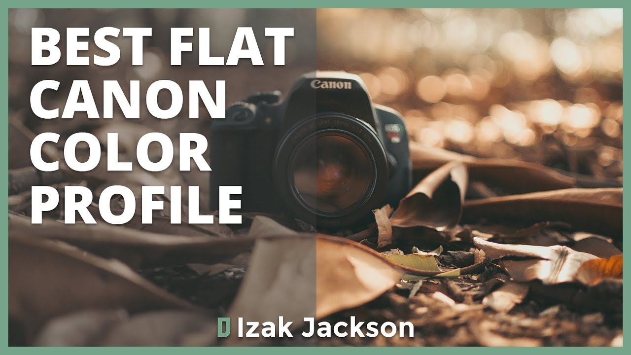 Prolost Flat: How To Set Up A Flat Color Profile On Canon DSLRs