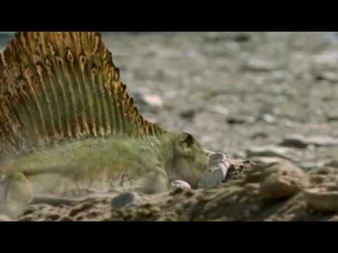 Walking with Monsters - Baby Dimetrodon rush