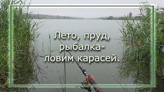 Літо ставок рибалка - ловимо карасів (201907_25)