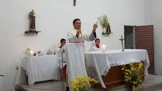 Baixar Homilía do frei Francisco Pereira -18-08-2018