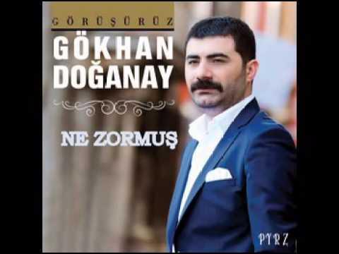 Gökhan Doğanay - Ne Zormuş 2016