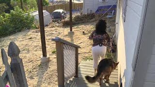 Donated Fence Lands Disabled Woman In Hot Water With Neighbor