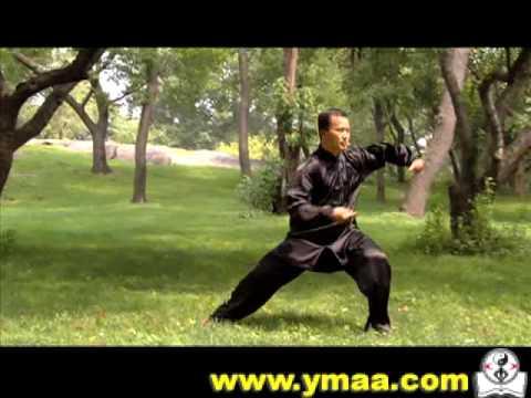 Chen Taijiquan Master Ren GuangYi & Lou Reed - Tai Chi
