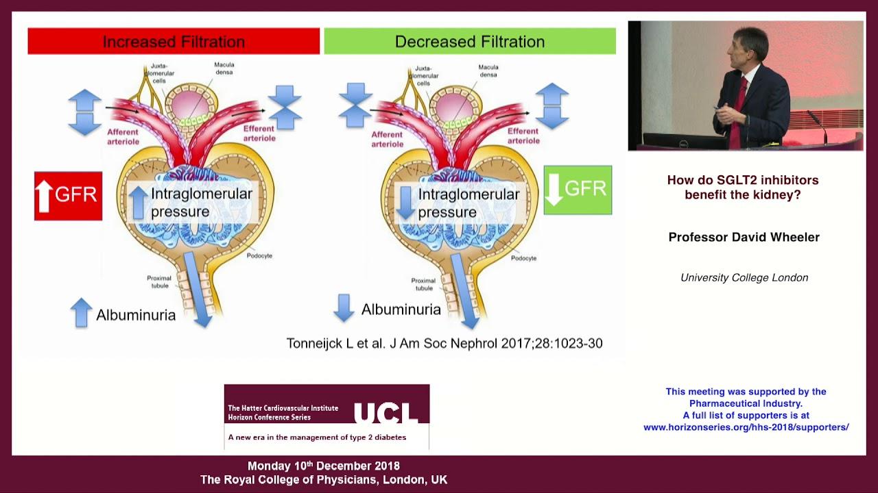 súlycsökkenés sglt2 inhibitorokkal