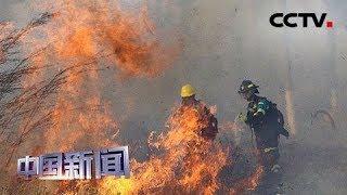 [中国新闻] 全球多地山火肆虐 玻利维亚东部地区山火持续蔓延 | CCTV中文国际