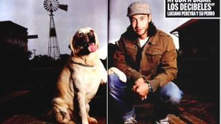 La zamba del negro alegre - Luciano Pereyra
