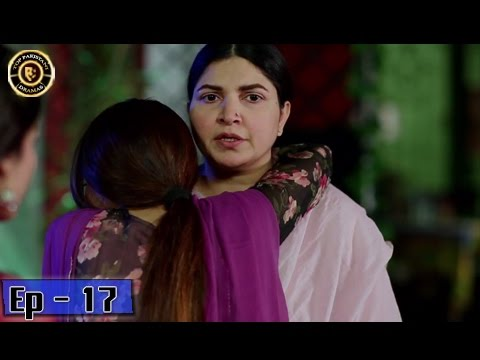 Zindaan Episode - 17 - 22nd May 2017 - Top Pakistani Drama