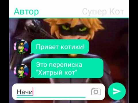 """Хитрый кот"" 1 часть переписка про Леди Баг"