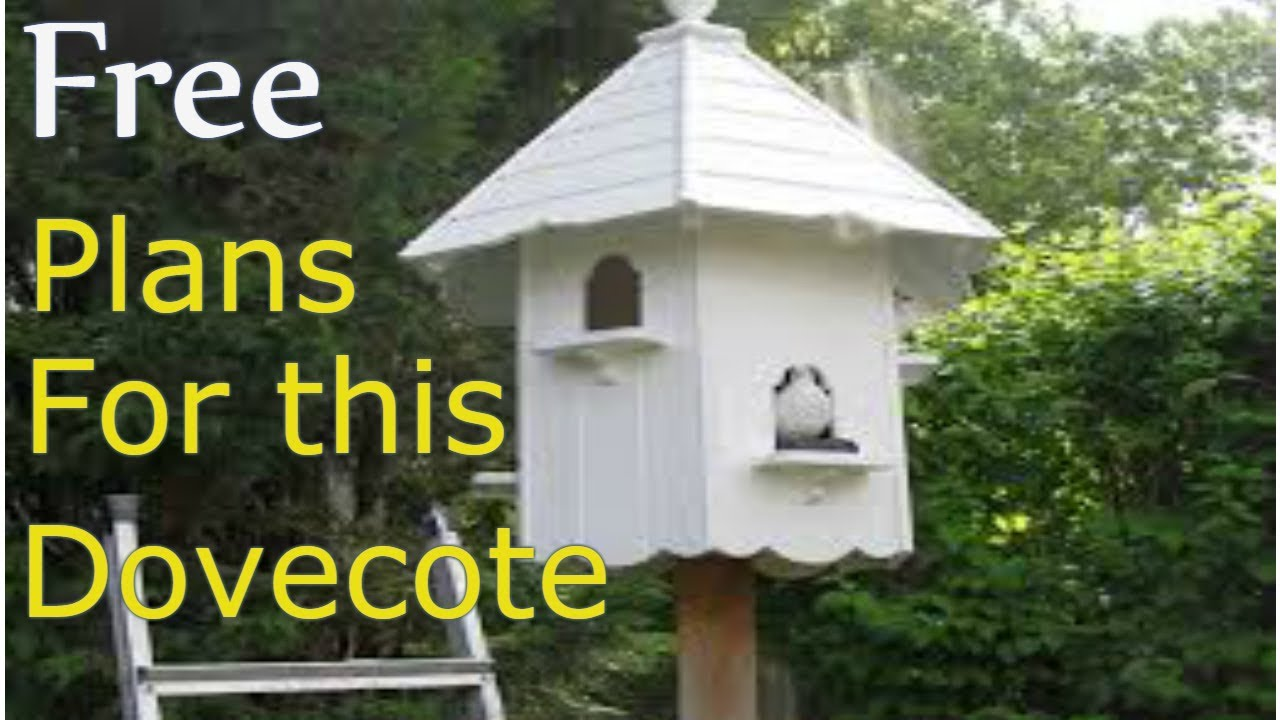 How To Build A Dovecote Free Plans Youtube
