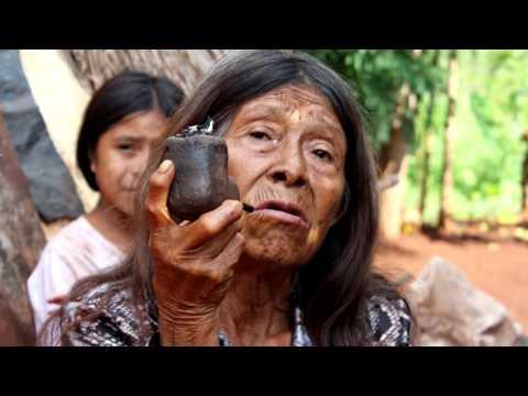 Proceso de desarrollo sostenible con los Guaraníes, Región Oriental del Paraguay
