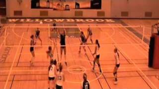 Josie Hopkins Outside Hitter 2010