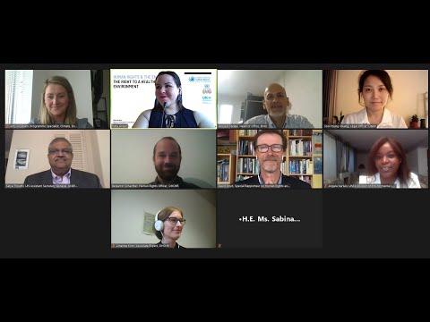 Nexus Dialogue On The Right To A Healthy Environment 24 Jul 2020 (Recording)