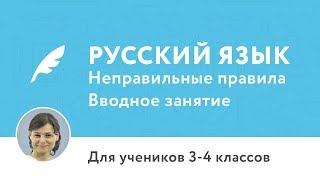 Вводное занятие по курсу «Курс по русскому языку для 3–4 классов (Неправильные правила)»