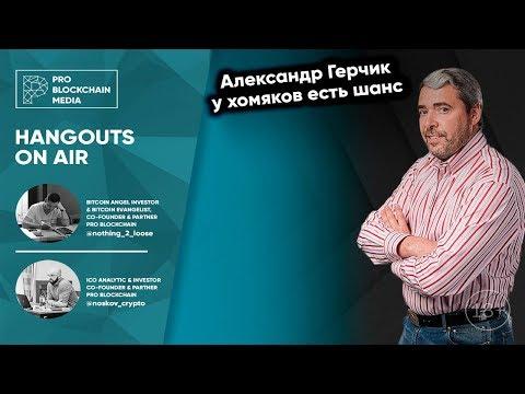 18+ Александр Герчик - у хомяков есть шанс