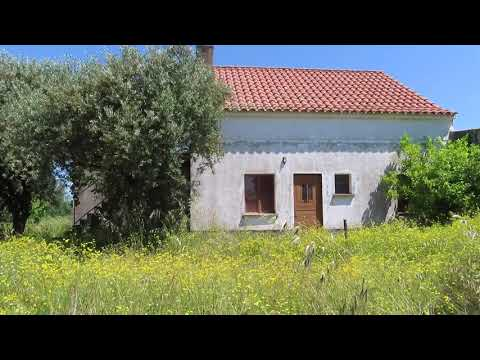 Organic Farm for sale in central South with 1,1ha / € 73.000 / centralportugalnatural@gmail.com