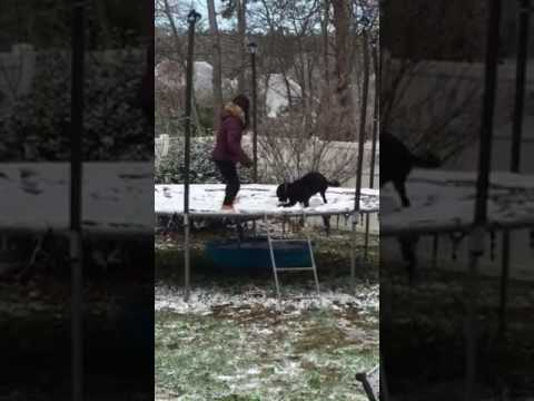 Jake's first snow and on trampoline