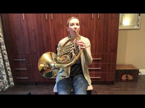 French Horn Lesson 1.1 from YouTube · Duration:  7 minutes
