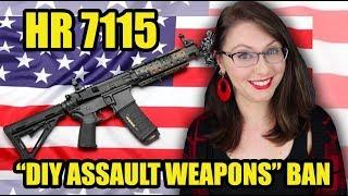 HR 7115: 3D Firearms &