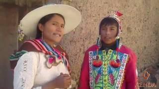 CORONAVIRUS cuidados - Quechua