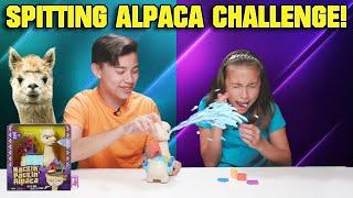 DON'T GET SPRAYED!!! Hackin' Packin' Alpaca Challenge!