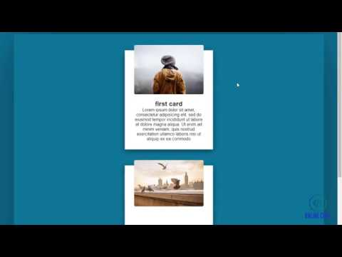 CSS Responsive Card Hover Effects  HtMl  CSs