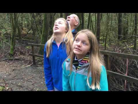 Mt Field National Park 2016 Russell Falls Tall Trees