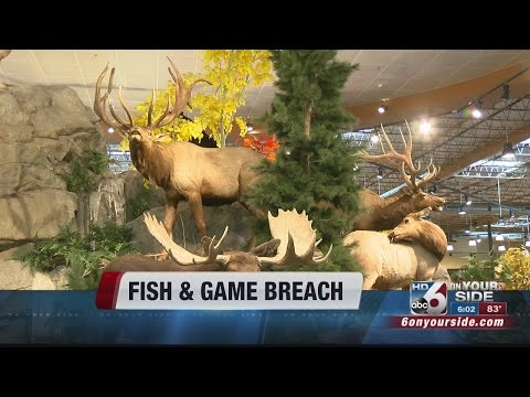 Elk, Deer Tags Sell Out Despite Idaho Fish And Game Computer Hack