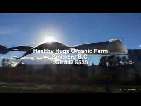 Healthy Hugs Organic Farm in Bulkley Valley