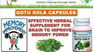 Gotu Kola Capsules | Centella asiatica - Benefits and Uses