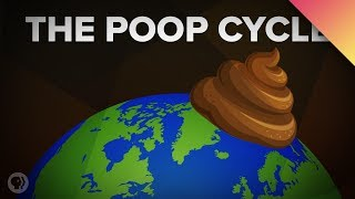 How Poop Shapes the World