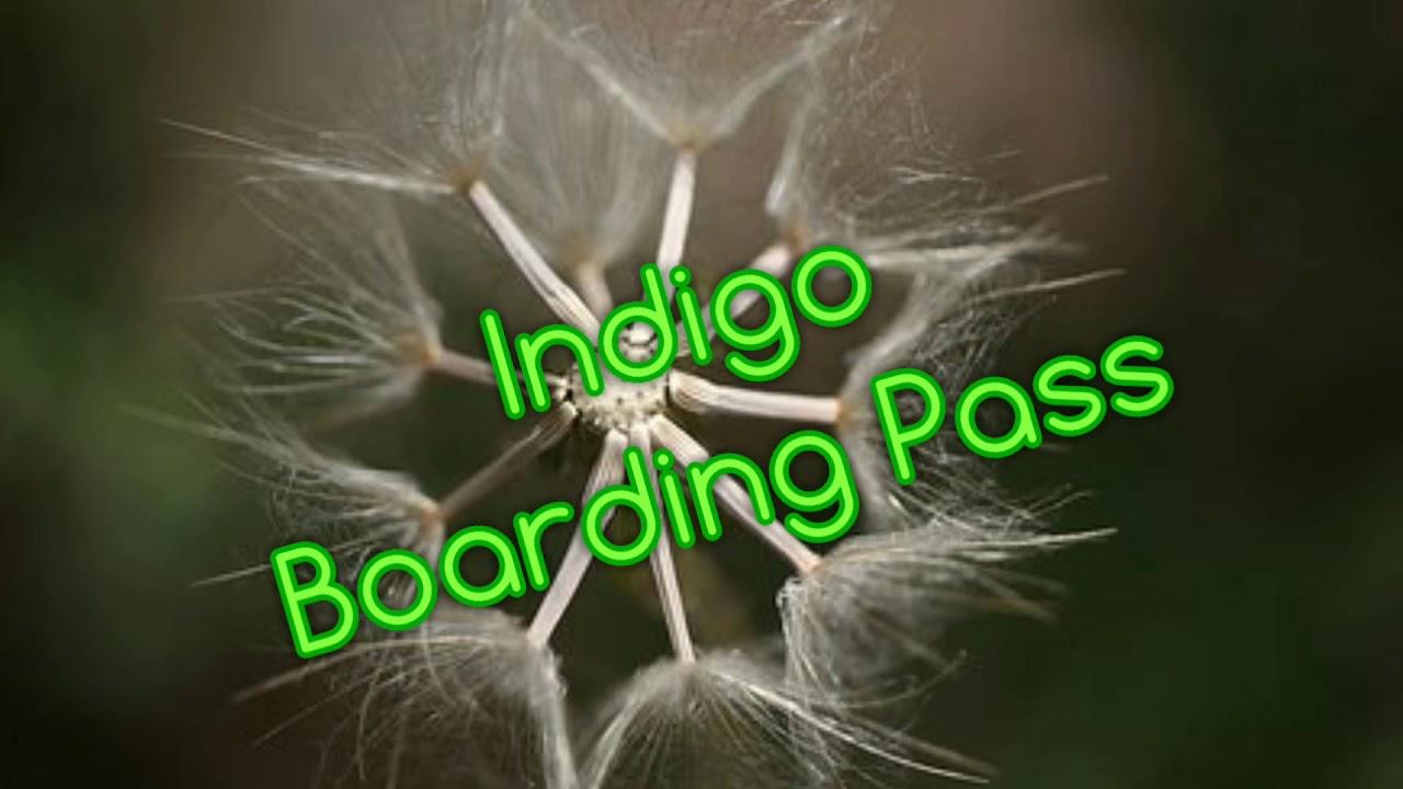 Indigo Boarding Pass Youtube