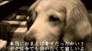 大反響の「犬のうた 〜ありがとう〜」待望の歌詞有りバージョン.