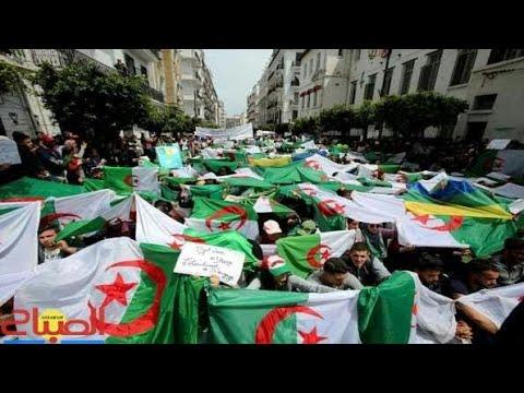 #اعتقال_وسجن كل من يرفع غير الراية الوطنية في اسبانيا #الوحدة_الوطنية