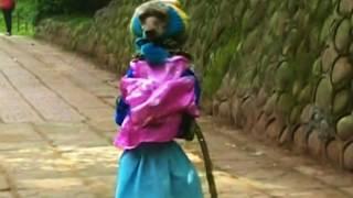 Poodle Walks On Hind Legs Dressed As A Schoolgirl ... Cute Or Cruel ?