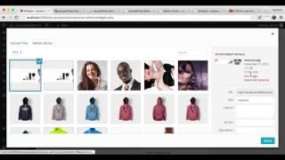 AP Store Pro - Konfigurieren Volle Breite Promo-Widget Abschnitt (Teil 2)